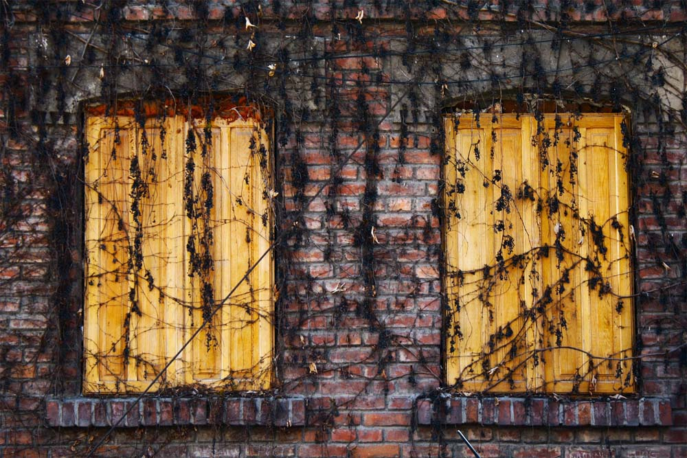 Fierari-boarded windows by Leeroy from unsplash.com