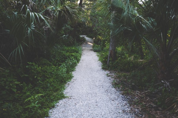 garden path by drew-coffman from unsplash edited